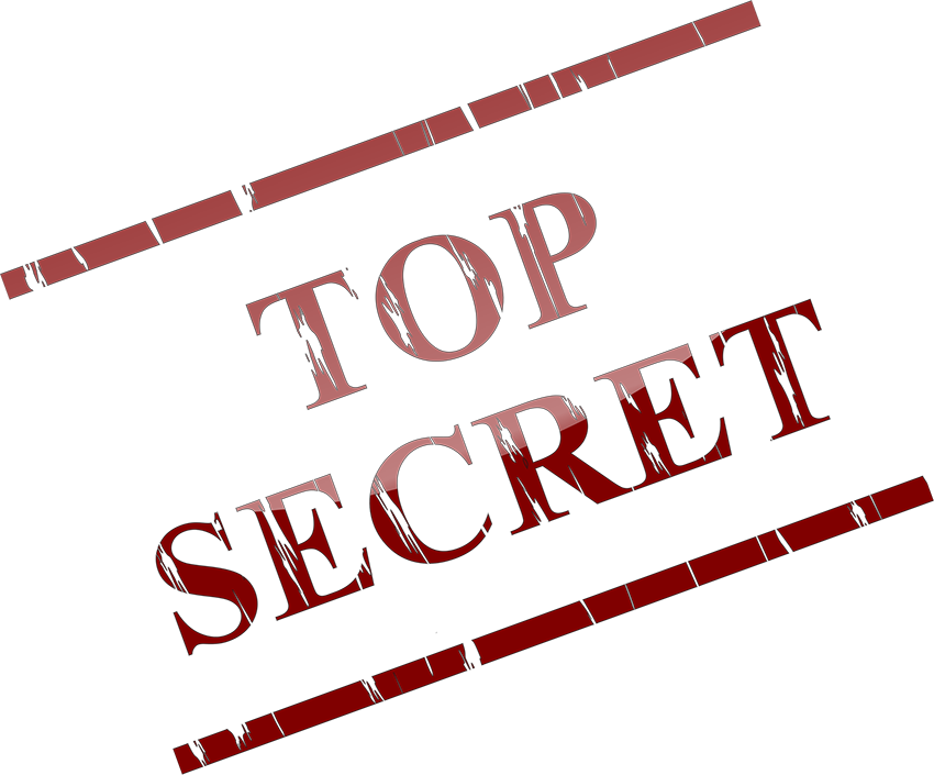 Akademia Animatora - TOP SECRET