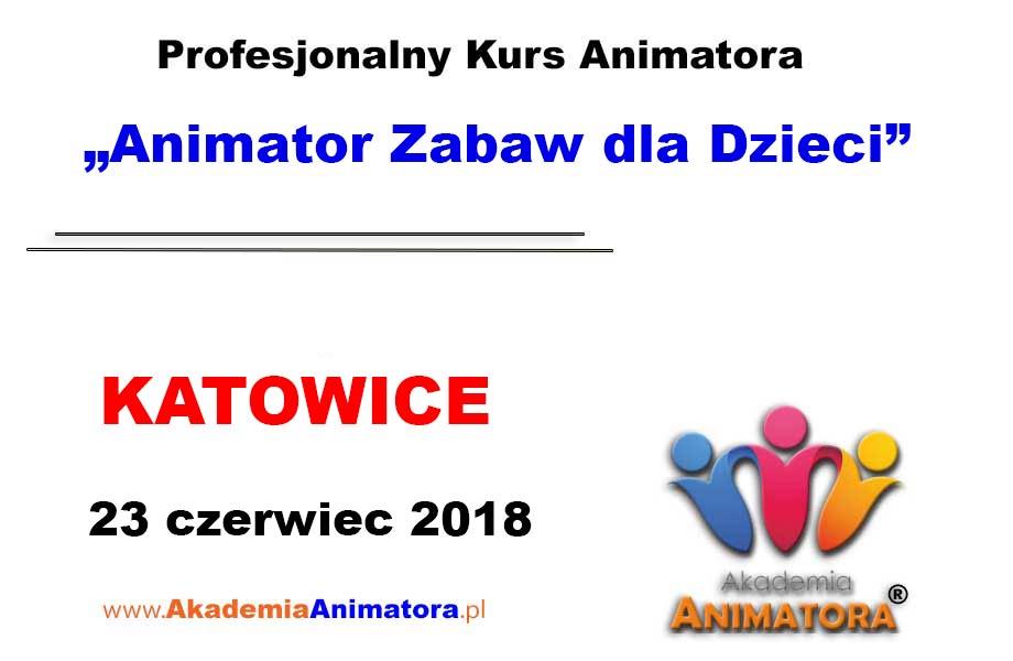 Kurs Animatora Katowice 23.06.2018